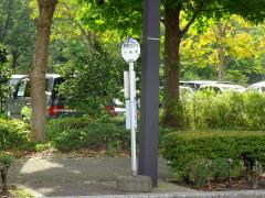 「博物館文化ホール」バス停留所