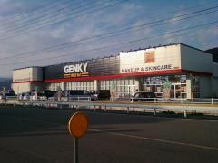 ゲンキー高山国府店