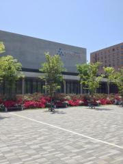 秋田県立美術館