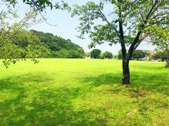 生目台公園