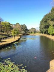 後谷津公園