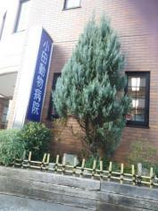 小田動物病院