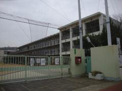 南甲子園小学校