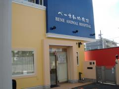 ベーネ動物病院
