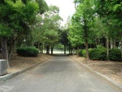 小鷹野公園