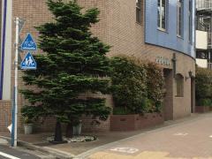 日本キリスト教団 東京池袋教会