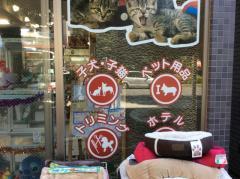 ペットショップ ディアフレンズ昭島店