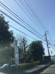 「念仏橋」バス停留所