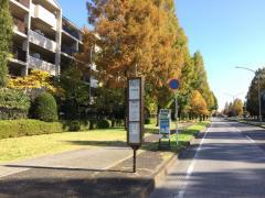 「創造の杜」バス停留所