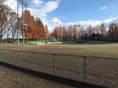 熊本県民総合運動公園野球場