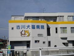 古川犬猫病院