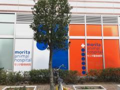 モリタ動物病院