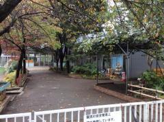 ろりぽっぷ幼稚園