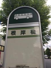 「根岸橋」バス停留所