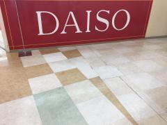 ザ・ダイソー盛岡南SCサンサ店