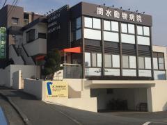 関水動物病院