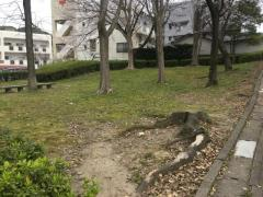 第5号小笹緑地