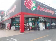レッドキャベツ桜木店