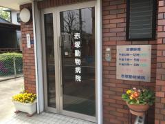 赤塚動物病院