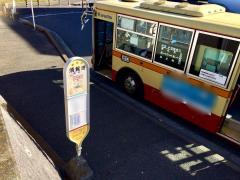 「須賀港」バス停留所