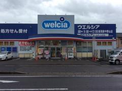 ウエルシア新潟東中野山店
