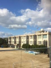 新南小学校