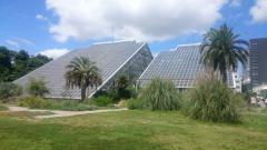 筑波実験植物園