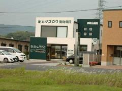 ムツゴロウ動物病院