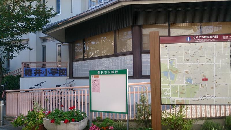 椿井小学校(奈良市)の投稿写真...