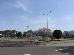 宇都宮戸祭自動車教習所