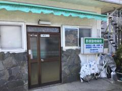 野原犬猫動物病院