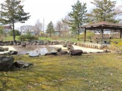 もりたの池