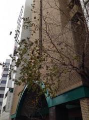 チサンホテル心斎橋