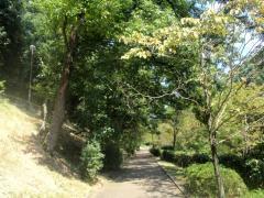 伏見北堀公園