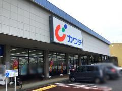 カワチ薬品 真鍋店