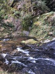 竜頭八重滝県立自然公園
