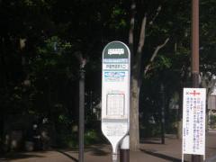 「戸田市役所入口」バス停留所