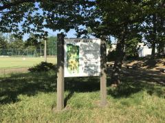 津島屋公園