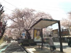 「グリーンプラザ」バス停留所