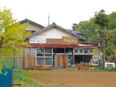 大塚小鳥店