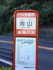 「向山(東伊豆町)」バス停留所