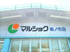 マルショク 坂ノ市店