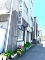 染川動物病院
