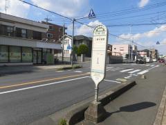 「丸ケ崎一本松」バス停留所