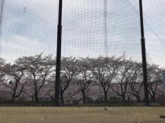 アサカゴルフパーク