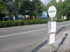 「鹿央総合支所前」バス停留所