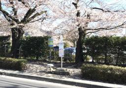 「あがたの森公園」バス停留所