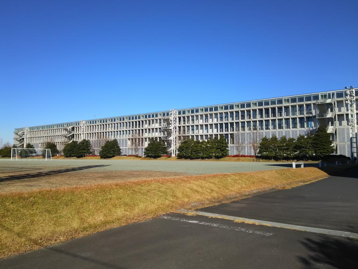 埼玉 県立 大学