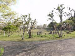 殿津谷公園