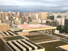 新潟大学医歯学総合病院ヘリポート